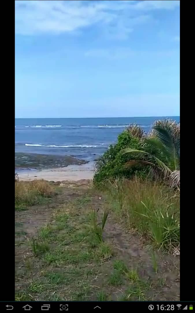 8 hectares of coral beach with tourism attractions forsale/rent/invest