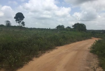 PRIME PLOT FOR INDUSTRIAL DEVELOPMENT FOR SALE