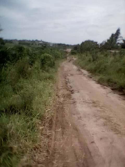 Mabwepande plot for sale 2014sqm
