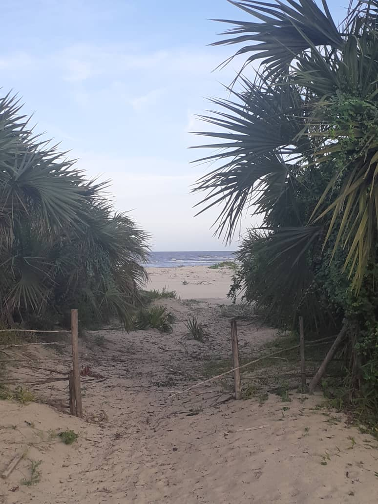 Campsite Beach For Sale