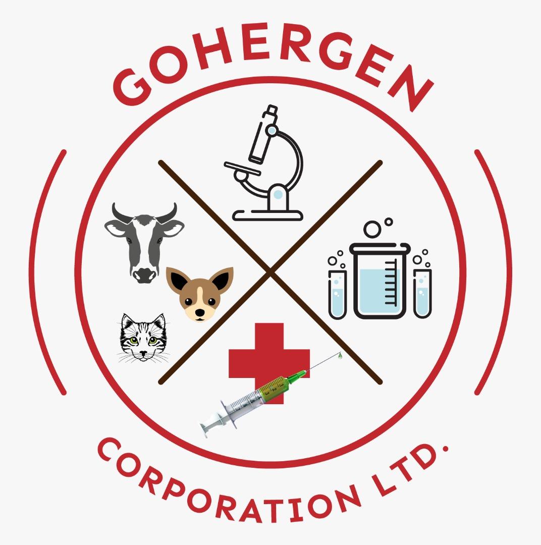 GOHERGEN CORPORATION LTD