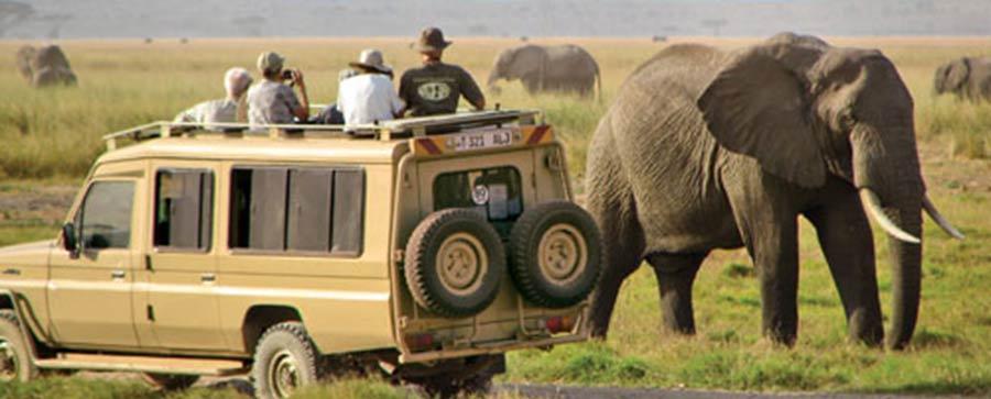 gaia africana travel – Tour company in moshi Kilimanjaro